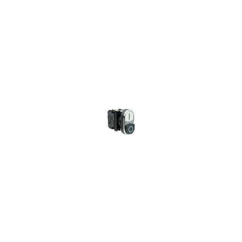 B132K20HB ⟡ Кнопка сдвоенная черно-белая с подсветкой неон (1НО+1НЗ)