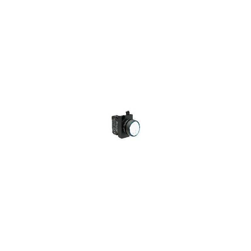 CP100DB ⟡ Кнопка нажимная круглая белая (1НО)